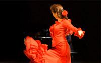 Flamenco-Shows 200